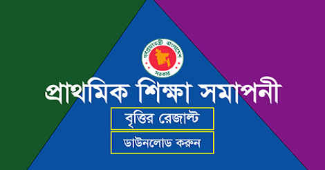 PSC Scholarship Result 2019